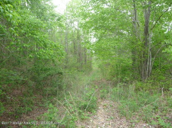 null bed null bath Vacant Land at  Machan Rd Addison, AL, 35540 is for sale at 78k - google static map