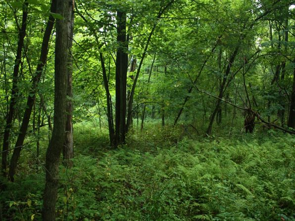 null bed null bath Vacant Land at  County Rd Lewiston, MN, 55952 is for sale at 40k - 1 of 17