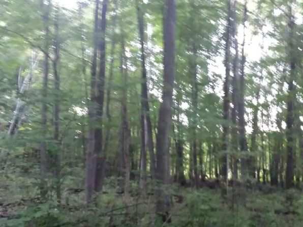 null bed null bath Vacant Land at 0 Blue Lake Rd Holton, MI, 49425 is for sale at 5k - google static map