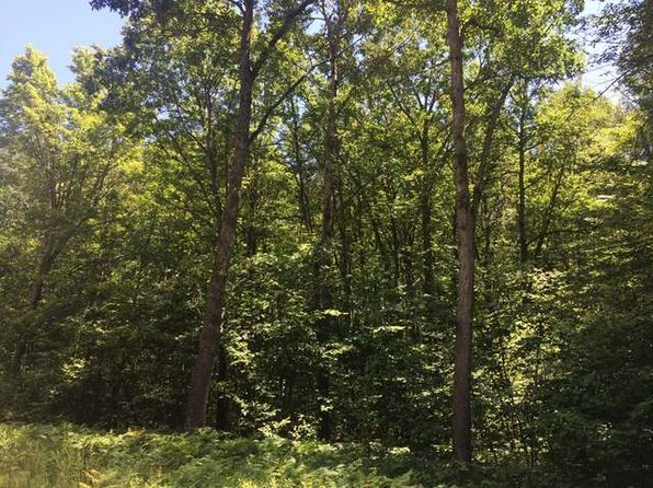 null bed null bath Vacant Land at  Nhn Monroe Rd Harrison, MI, 48625 is for sale at 15k - 1 of 2