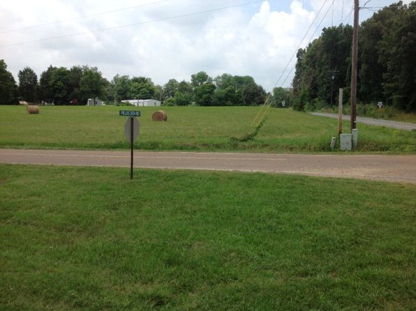 null bed null bath Vacant Land at 0 Hwy 423 & Fields School Rd McKenzie, TN, 38201 is for sale at 20k - 1 of 5