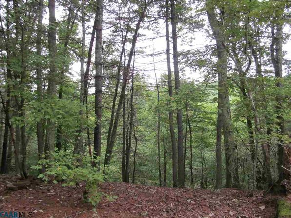 null bed null bath Vacant Land at  Tract 4 Mechunk Creek Dr Troy, VA, 22974 is for sale at 179k - 1 of 4