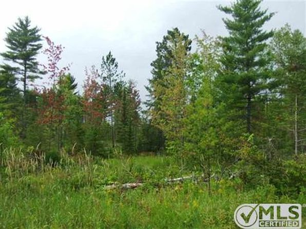 null bed null bath Vacant Land at  Tbd N Cemetery Rd Ewen, MI, 49925 is for sale at 50k - 1 of 6