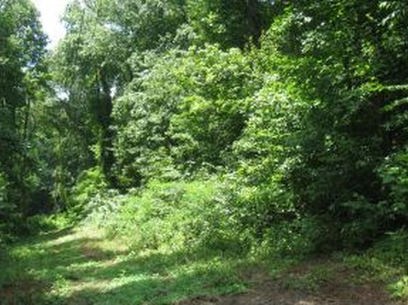 null bed null bath Vacant Land at  Tbd Clayman Vly Bristol, VA, 24202 is for sale at 89k - 1 of 5