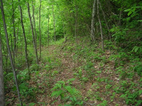null bed null bath Vacant Land at  Black Rock Crk Qualla, NC, 28719 is for sale at 60k - 1 of 4