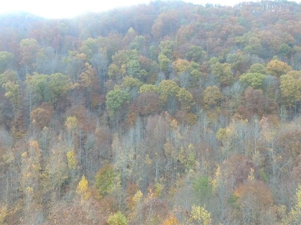 null bed null bath Vacant Land at 30 Acres Steve Brown Rd Bean Station, TN, 37708 is for sale at 60k - 1 of 15