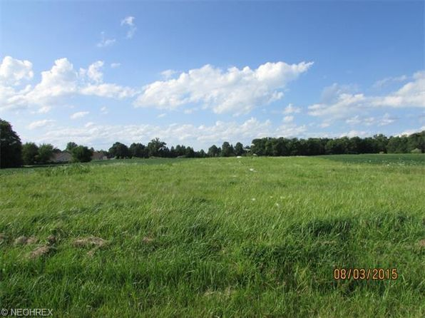 null bed null bath Vacant Land at  Pamer Atwater, OH, 44201 is for sale at 40k - 1 of 3