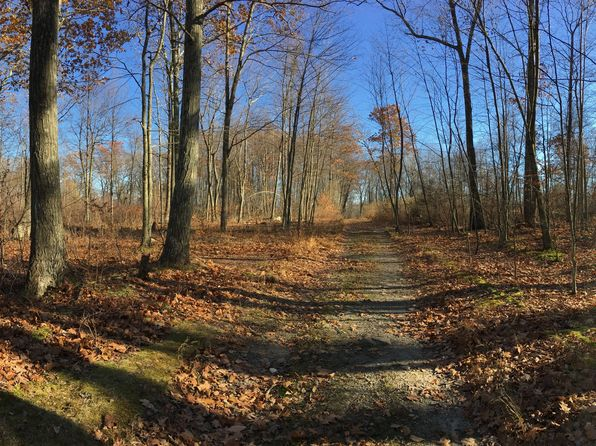 null bed null bath Vacant Land at  Popular Rd Otisville, NY, 10963 is for sale at 2k - 1 of 3