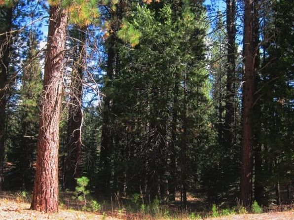 null bed null bath Vacant Land at 8 Sioux Trl Graeagle, CA, 96013 is for sale at 75k - 1 of 18