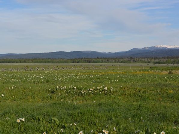 null bed null bath Vacant Land at 4102 STAGECOACH WAY ISLAND PARK, ID, 83429 is for sale at 60k - 1 of 3