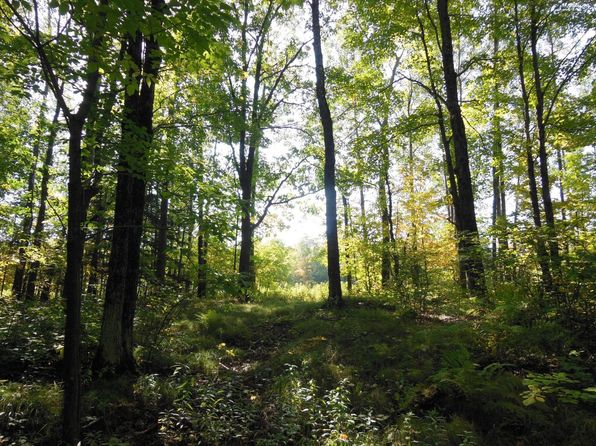 null bed null bath Vacant Land at  S End Rd Merrill, WI, 54452 is for sale at 99k - 1 of 45