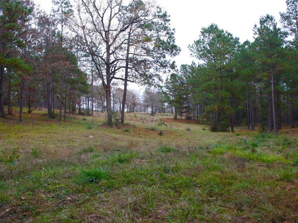 null bed null bath Single Family at 1152 County Road 3260 Colmesneil, TX, 75938 is for sale at 35k - 1 of 41