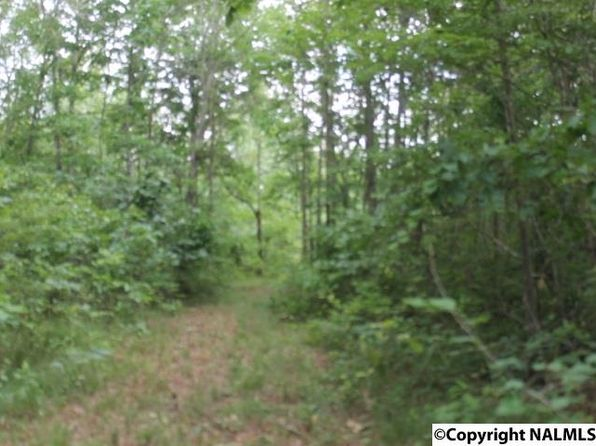null bed null bath Vacant Land at 414 County Road 778 Pisgah, AL, 35765 is for sale at 41k - 1 of 3