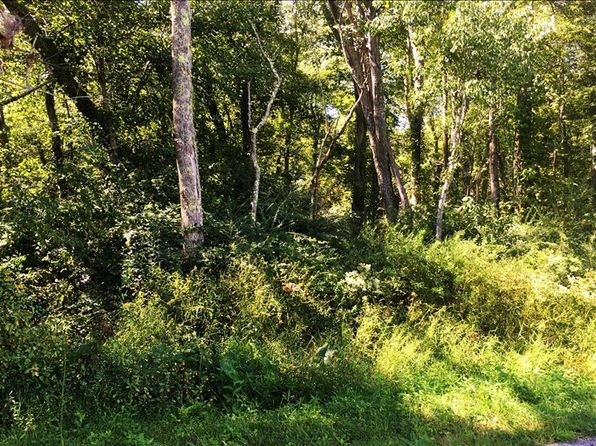 null bed null bath Vacant Land at C-2 Crawford Blairsville, GA, 30512 is for sale at 40k - 1 of 6