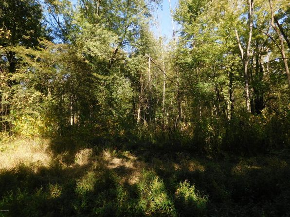 null bed null bath Vacant Land at 133RD Avenue Hamilton, MI, 49419 is for sale at 40k - 1 of 18