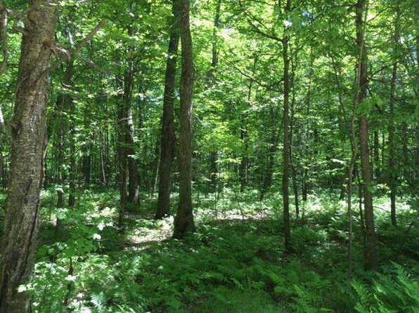 null bed null bath Vacant Land at 54 Chip N Dale Rd Pickerel, WI, 54465 is for sale at 8k - google static map