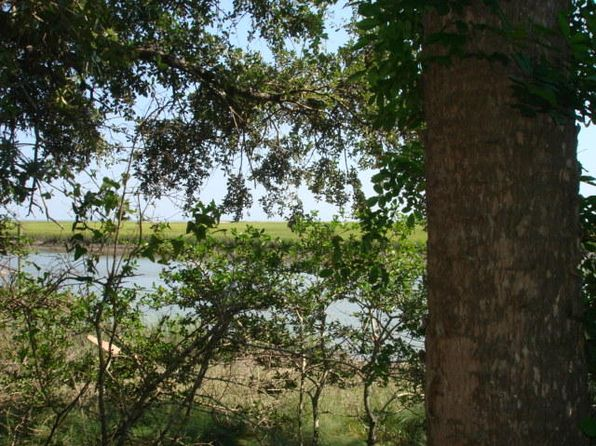 null bed null bath Vacant Land at 3 Ironwood Ln Edisto Island, SC, 29438 is for sale at 245k - 1 of 3