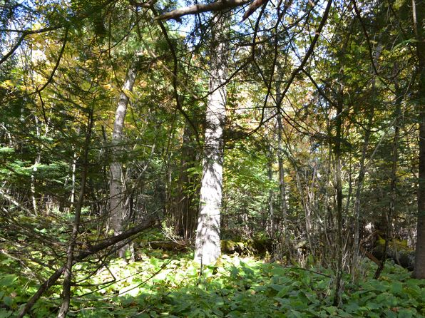 null bed null bath Vacant Land at 2XX E 5th St Grand Marais, MN, 55604 is for sale at 55k - 1 of 34