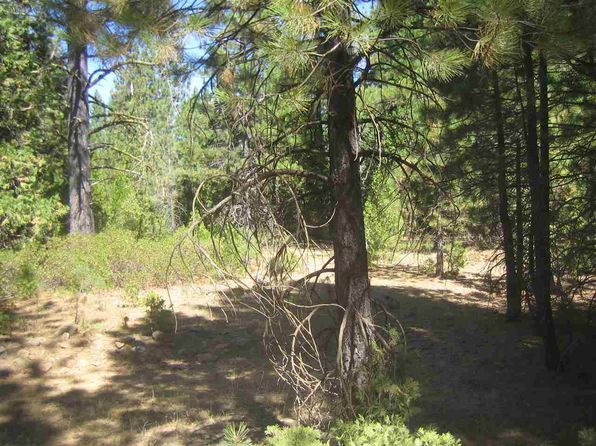null bed null bath Vacant Land at 1100 Pinion Pine Cir Johnsville, CA, 96103 is for sale at 29k - 1 of 2