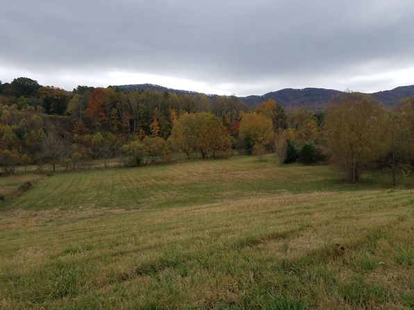 null bed null bath Vacant Land at 00 Tweed Springs Rd Greeneville, TN, 37843 is for sale at 50k - 1 of 6