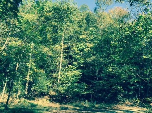 null bed null bath Vacant Land at 3 Damon Rd Schuyler, VA, 22969 is for sale at 48k - google static map