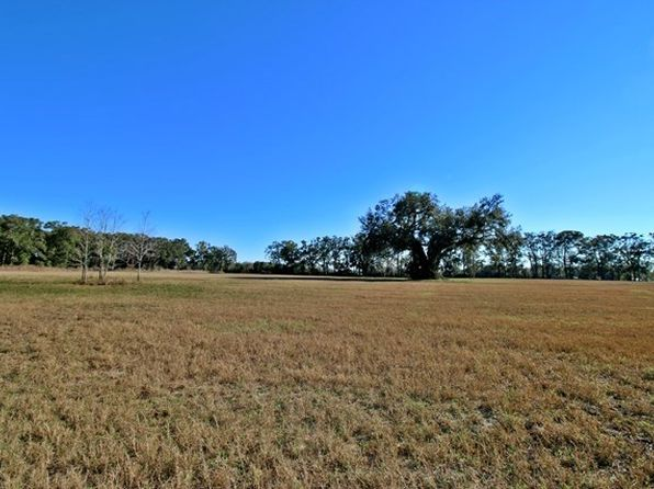 null bed null bath Vacant Land at  SW 25 AVE BELL, FL, 32619 is for sale at 80k - 1 of 6