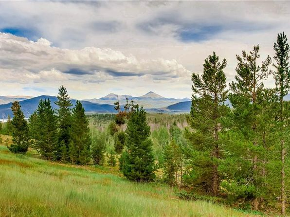 2 bed 2 bath Condo at 9490 Ryan Gulch Rd Wildernest, CO, 80498 is for sale at 335k - 1 of 25