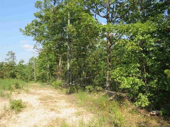 null bed null bath Vacant Land at Y Hwy Ellington, MO, 63638 is for sale at 40k - 1 of 3