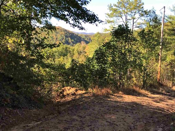 null bed null bath Vacant Land at  Lot 29 Frank Way Del Rio, TN, 37727 is for sale at 48k - 1 of 12
