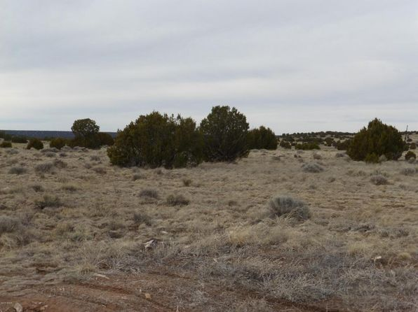 null bed null bath Vacant Land at  Tbd Show Low Pines Lots Concho, AZ, 85924 is for sale at 15k - 1 of 11