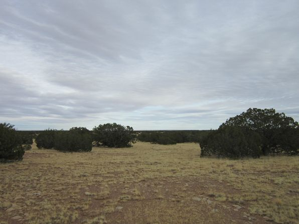 null bed null bath Vacant Land at 006 Turkey Dr Holbrook, AZ, 86025 is for sale at 12k - 1 of 33