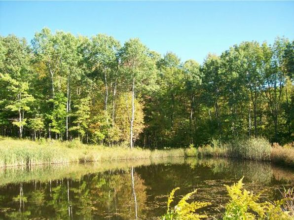 null bed null bath Vacant Land at 0 S Hill Rd Van Etten, NY, 14889 is for sale at 60k - 1 of 10