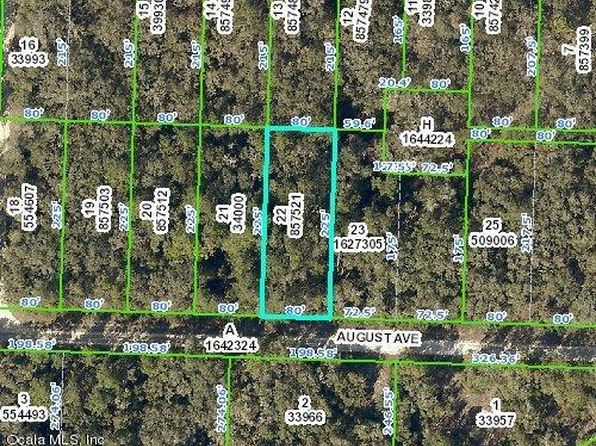 null bed null bath Vacant Land at 33499 AUGUST AVE WEBSTER, FL, 33597 is for sale at 6k - google static map