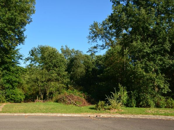null bed null bath Vacant Land at 000 Cheeks Ct Cortland, OH, 44410 is for sale at 34k - 1 of 5