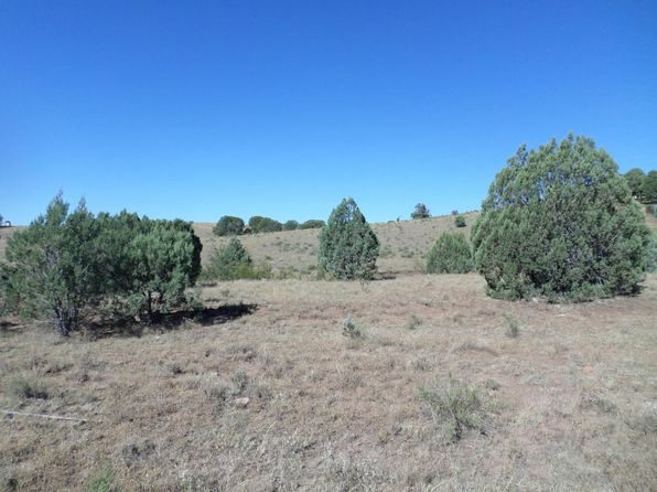 null bed null bath Vacant Land at 767 N Winchester Dr Young, AZ, 85554 is for sale at 67k - 1 of 2