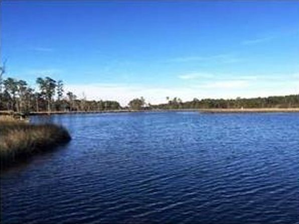 null bed null bath Vacant Land at 0 Palmeto Pt E Theodore, AL, 36582 is for sale at 125k - 1 of 2