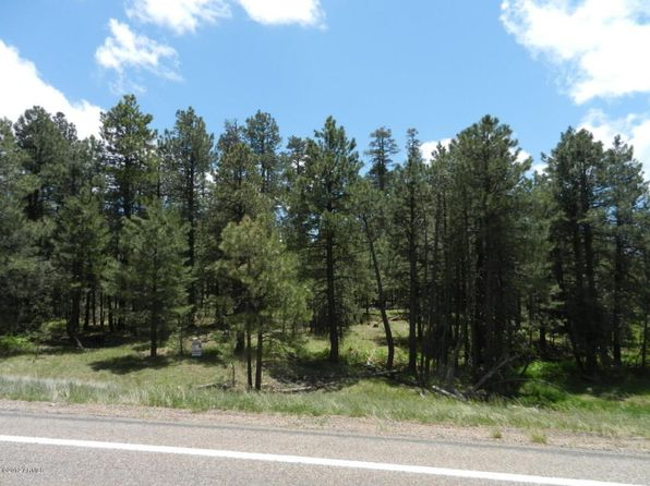 null bed null bath Vacant Land at 2692 State Rte Forest Lakes, AZ, 85931 is for sale at 255k - 1 of 2