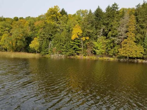 null bed null bath Vacant Land at  Forest Ln Long Lake, WI, 54121 is for sale at 65k - 1 of 3