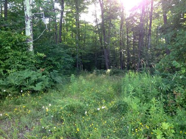 null bed null bath Vacant Land at ON Niemi Rd Tripoli, WI, 54564 is for sale at 35k - 1 of 10