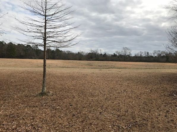 null bed null bath Vacant Land at 0 Leeville Rd Petal, MS, 39465 is for sale at 119k - google static map
