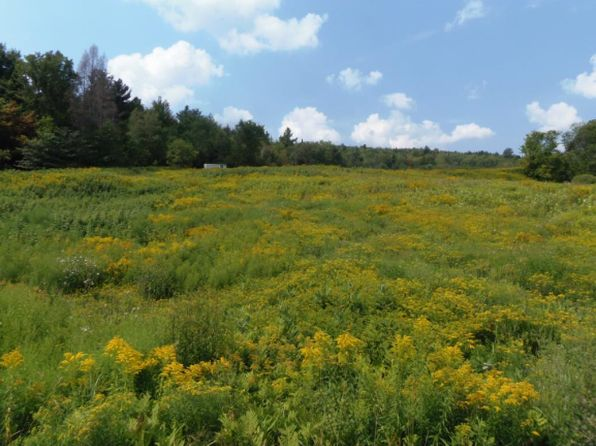 null bed null bath Vacant Land at 2167 Vt Route 100 Rd Westfield, VT, 05874 is for sale at 180k - 1 of 11