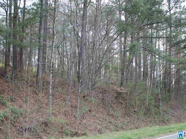 null bed null bath Vacant Land at 00 Murphrees Valley Rd Springville, AL, 35146 is for sale at 15k - 1 of 3