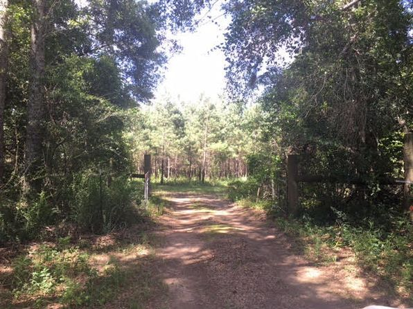 null bed null bath Vacant Land at 0 Sadie Johnson Rd Newville, AL, 36353 is for sale at 120k - 1 of 14