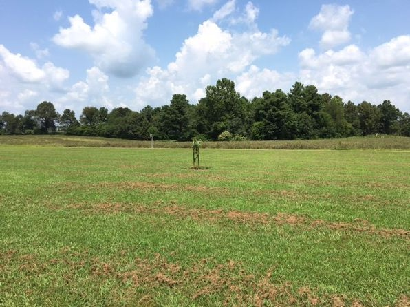 null bed null bath Vacant Land at 000 Coopertown Rd Murray, KY, 42071 is for sale at 144k - 1 of 3