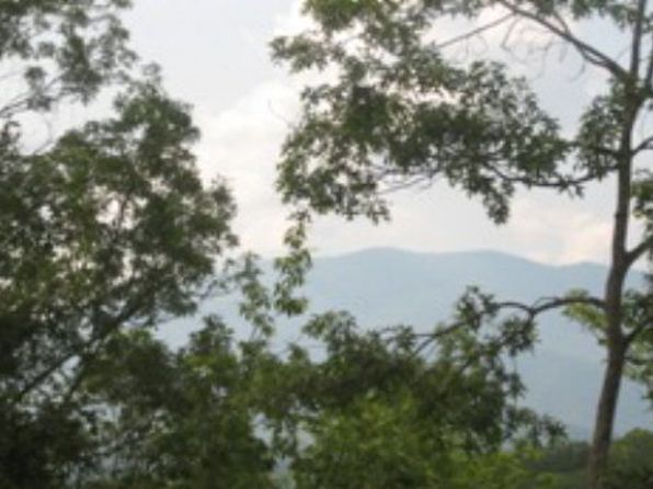 null bed null bath Vacant Land at  Deep Crk Bryson City, NC, 28713 is for sale at 94k - 1 of 2
