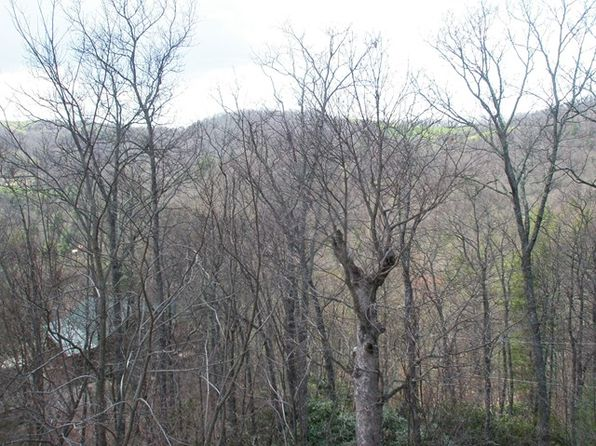 null bed null bath Vacant Land at 0 Bear Cv Bryson City, NC, 28713 is for sale at 90k - 1 of 2