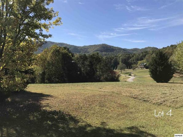 null bed null bath Vacant Land at  SCHISANDRA LN COSBY, TN, 37722 is for sale at 43k - google static map