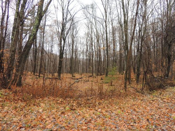 null bed null bath Vacant Land at 0000 Danby Mountain Rd Dorset, VT, 05251 is for sale at 60k - 1 of 4