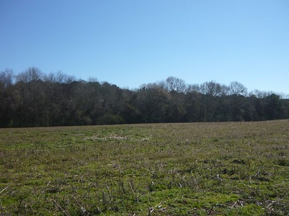 null bed null bath Vacant Land at 4.5 Ac Cr Kinston, AL, 36453 is for sale at 20k - 1 of 9