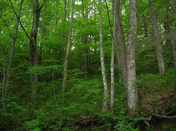 null bed null bath Vacant Land at  Black Rock Crk Qualla, NC, 28719 is for sale at 90k - google static map